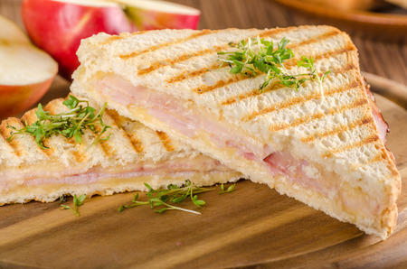 Panini cheese ham toast, fresh apple, back to shool sandwich, food photography Stock Photo