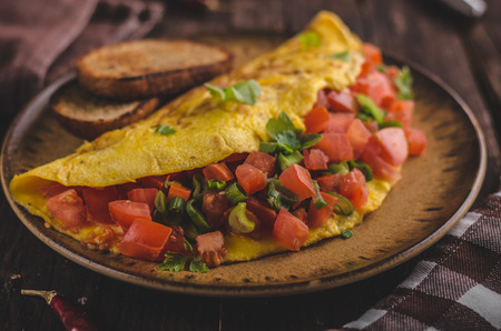 Vegetarian omelette, fried bread, filled with vegetable and cheese Banco de Imagens - 96849624