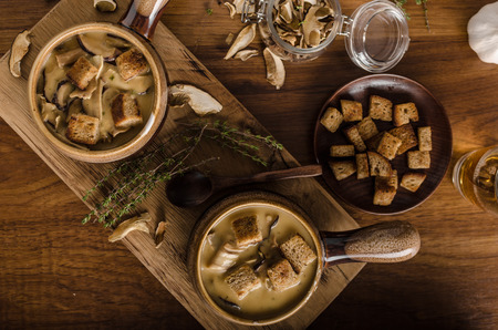 Rustic mushrooms soup, czech forest mushrooms, fresh collect in woods