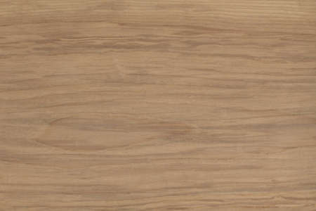 real natural wood texture for background photo