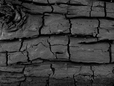 soot: charred log background texture