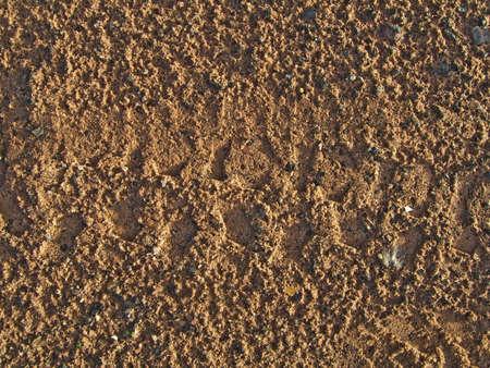 damp: Modello nella sabbia umida di corso