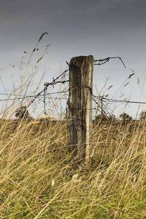 fencing wire: Image of a fence post that has seen better days,with a shallow depth of field. Stock Photo