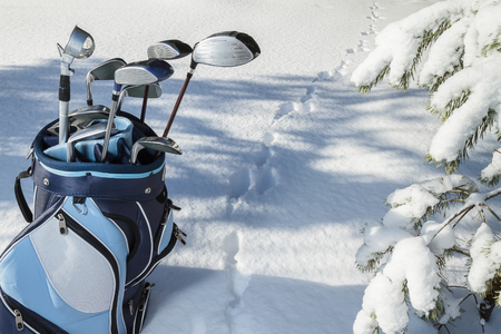 lifestyle outdoors: Golf Bag with Clubs in snowy forest, rabbits trace on snow