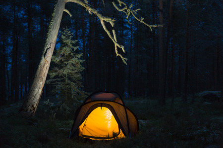 Wild camping in wilderness in old forest