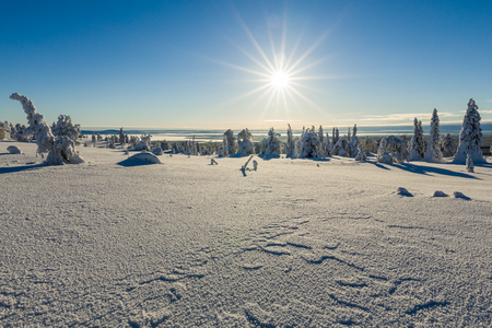 Beautiful Winter landscape in Lapland in Northern Finland Фото со стока