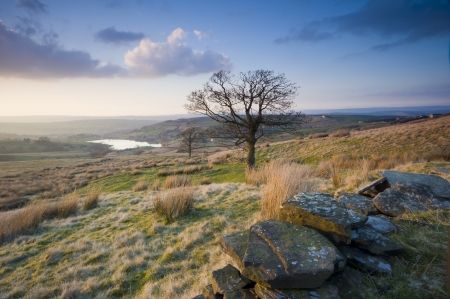 singular: yorkshire moorland view Stock Photo