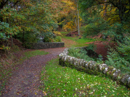 old packhorse bridge: dry stone wall in autumn woodland