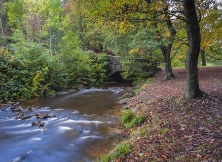 old packhorse bridge: old packhorse bridge over woodland stream in yorkshire