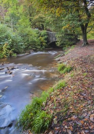 old packhorse bridge: old stone bridge in yorkshire autumn woodland Stock Photo
