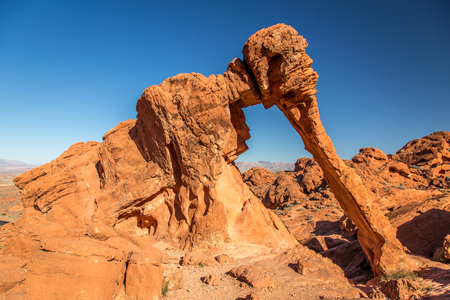 Elephant rock Imagens - 25304149