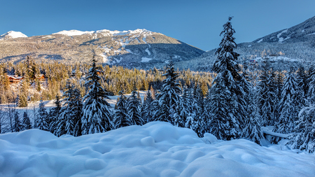 whistler and blackcomb mountains on a sunny winter day after a recent snowfall. Scenic view from Blueberry Hill, Whistler, British Columbia, Canada