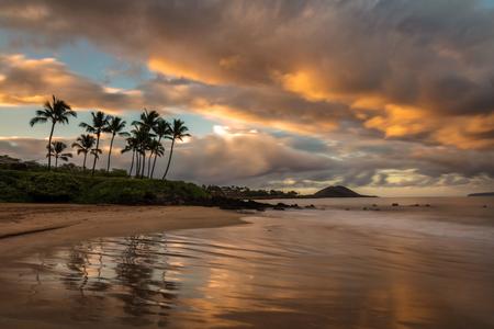Reflection of a tropical Scene at Sunrise on a South Maui Beach, Hawaii 版權商用圖片 - 106364543