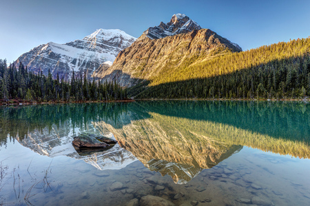 Reflection of Mount Edith Cavell in Cavell Lake at sunrise, Jasper National Park, Alberta, Canada 版權商用圖片 - 104951971