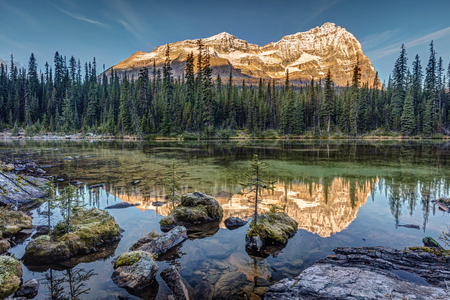 Autumn sunrise in the rocky mountains of British Columbia. from the shore of Lake O'Hara in the wilderness of Yoho National Park 版權商用圖片 - 104951994