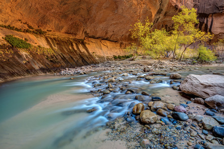 Virgin Narrows of Zion. A wonderful hike in the Virgin River, a section called the Narrows 版權商用圖片