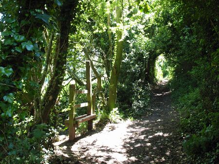 stile: A stile on a footpath bathed in summer sun