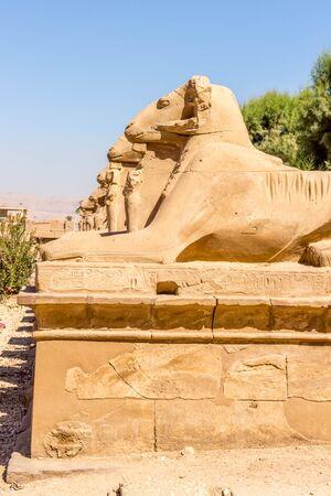 Luxor Sphinx Avenue Stock Photo