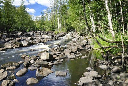 Dry summer season for salmon river