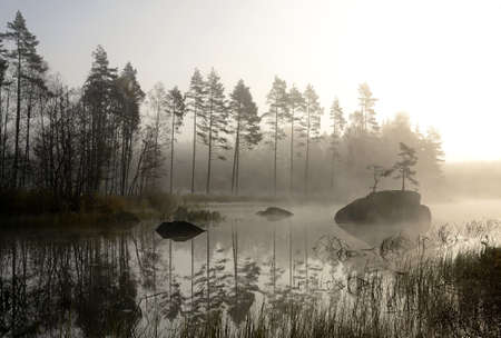 Foggy autumn s landscape  photo