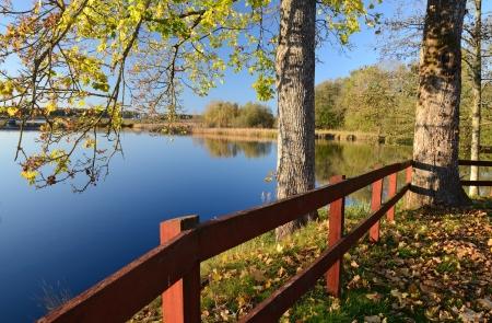 Mooie herfst opvatting