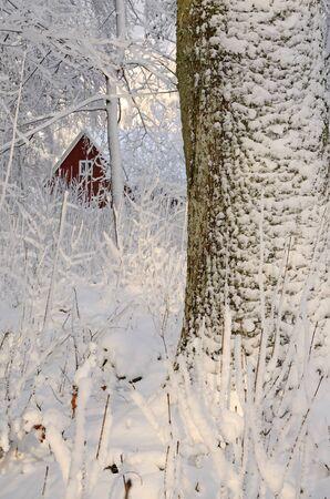 workhouse: Swedish winter details