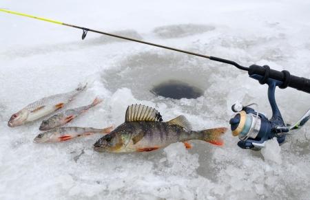Winter vissen in het meer Stockfoto