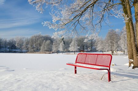 Red bench in winter season Stock Photo - 17754298
