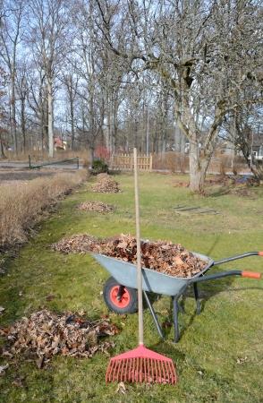 Tuingereedschap in het voorjaar van seizoen