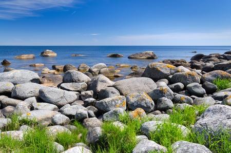 summer landscape: Summer Swedish coast in sunny day