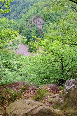 valley view: Bella vista sulla valle nel parco nazionale svedese