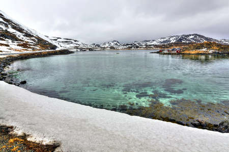 Spring sea bay in North Norway photo