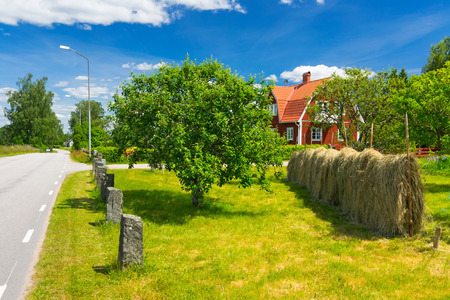 Summer colors of Swedish village photo