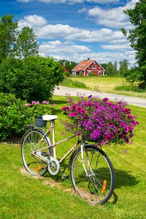 Bloem fiets in Zweedse tuin Stockfoto