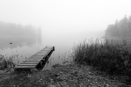Foggy bridge in monochromatic landscape photo