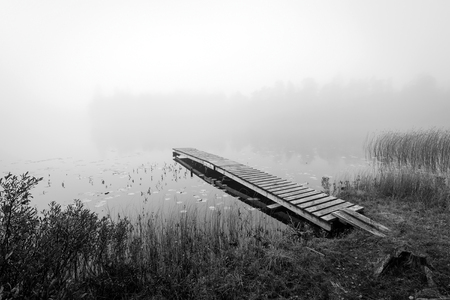 Monochromatic autumn view for Swedish lake photo