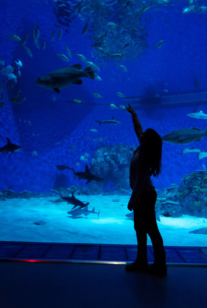 School girl in front of big aquarium photo