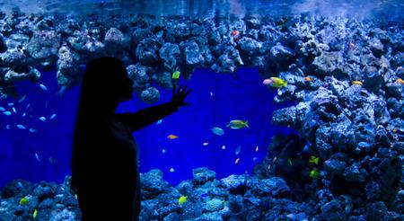 Teenage girl admire coral fishes in aquarium photo