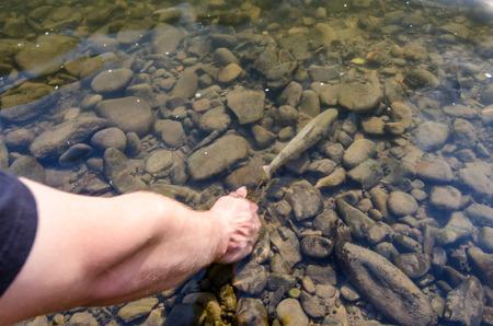 instant de sortie de la truite brune