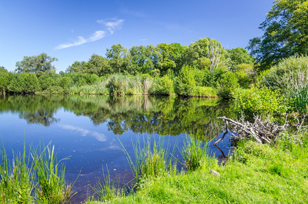 Swedish water pond in summer Stock Photo