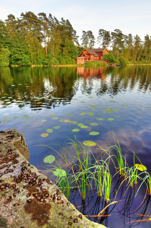 rushes: Swedish vertical and natural scenery
