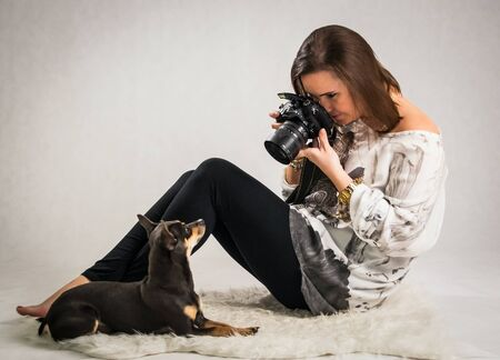photo studio: Animal photo session in studio Stock Photo