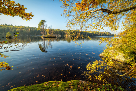 Swedish lake in autumn scenery