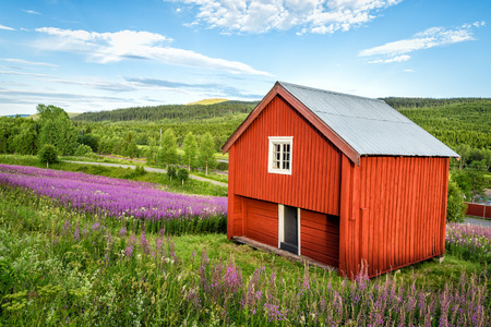 Typical red shed in Swedish hills