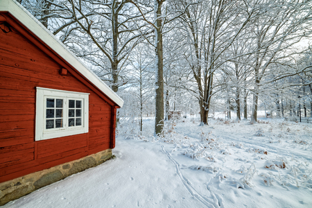Swedish winter contrasts Фото со стока