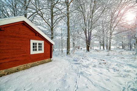Paysage d'hiver suédois en matinée ensoleillée Banque d'images