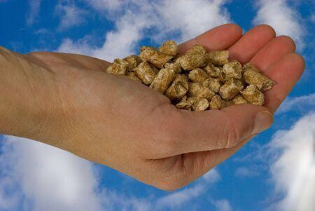 Hand holding heating-pellets, environment safe.
