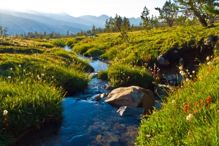 The headwaters of the merced River begin on the Triple Peak Fork high on a plateau near Isberg Pass  Stok Fotoğraf