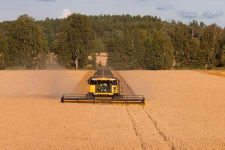 combine: A farmer in his combine