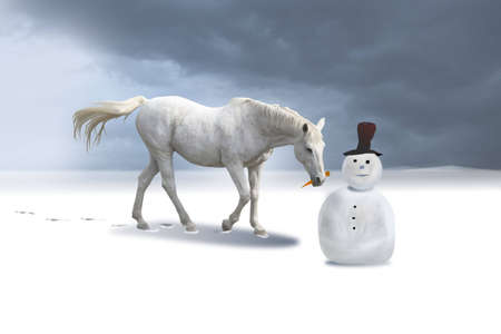 colorado landscape: The snowman and the horse in a winter landscape.